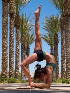 yoga_palms